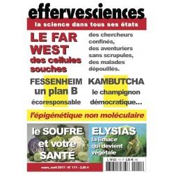 Effervesciences 111
