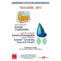 UNIVERSITÉ D'ÉTÉ  2013