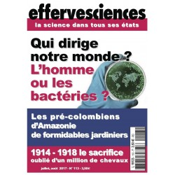 Effervesciences n°113